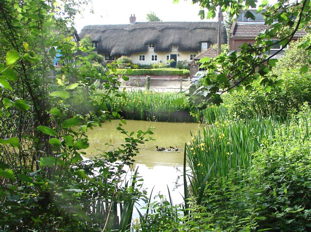 Ropley-Village-Pond